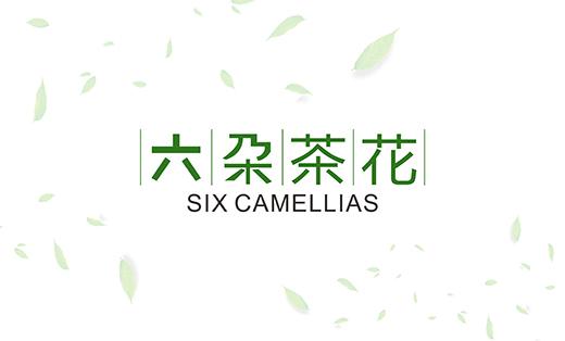 六朵茶花 包装设计