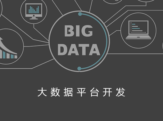 大数据平台开发