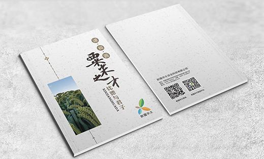 艺点-新疆华大画册设计