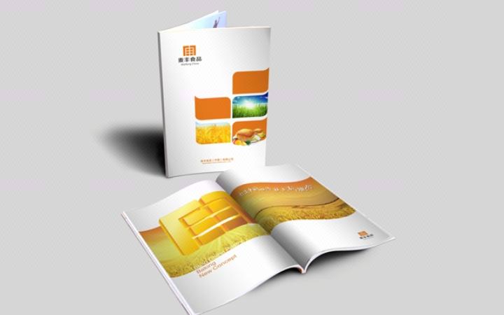 [休闲娱乐]形象宣传画册+产品画册海报+招商运营画册设计