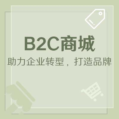 B2C商城网站定制