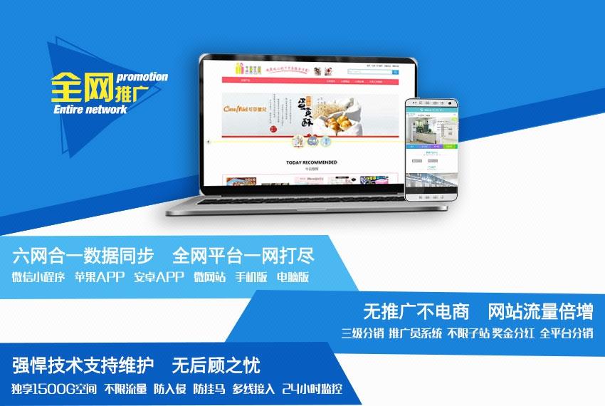 电商模板网站_【微度网络】商城建设网站开发微商城APP开发模板建站商城模板1