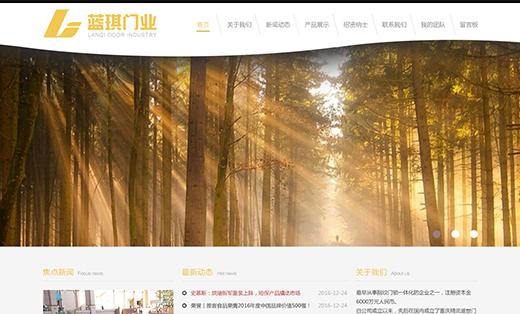 定制开发企业网站