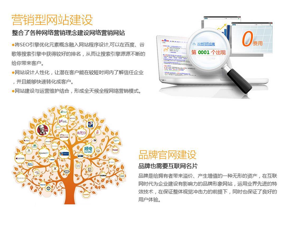 网站定制开发_网站建设-网站开发设计总监亲自参与-尊贵版商城网站/商城制作4