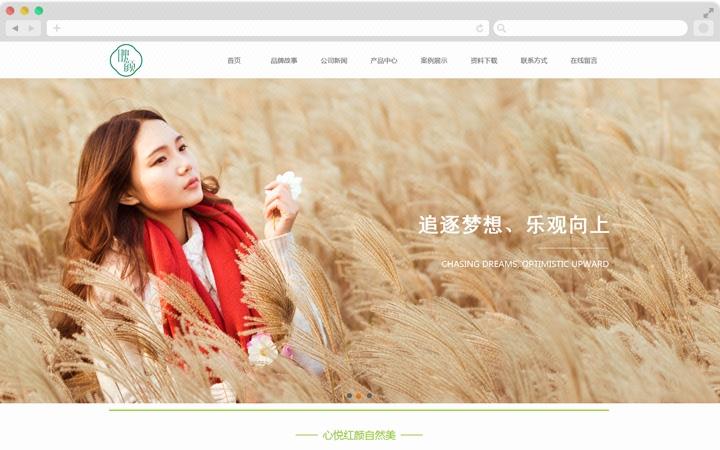 企业网站建设 公司网站定制开发 网页设计建网站 手机网站制作