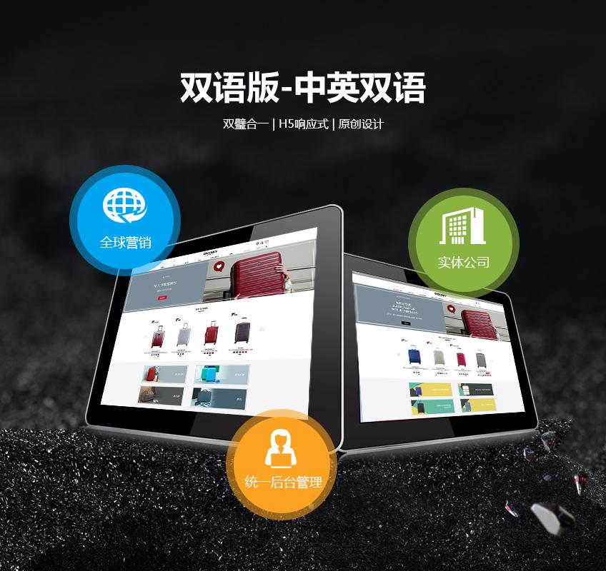 企业网站_精美版定制|外贸企业网站|欧美网站建设|中英双语版网站开发1