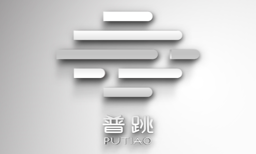 互联网 公司LOGO设计——普跳科技