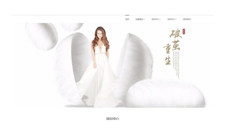 网站建设深圳网站建设网站设计仿站网站独立ui和家居设计设计师图片