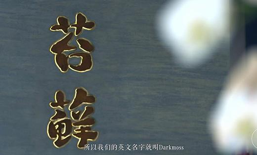 苔藓Dark Moss-品牌片