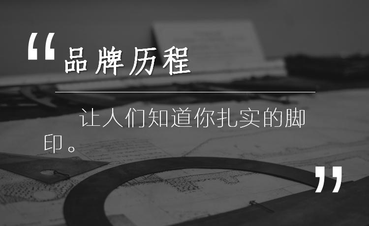 企业公司品牌全案策划历程发展文案简介大事记传记介绍