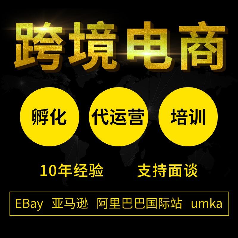 海外营销跨境电商代运营ebay运营亚马逊代运营阿里巴巴国际站