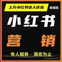 红书达人KOL网红明星素人品牌产品营销推广宣传带货发布撰写
