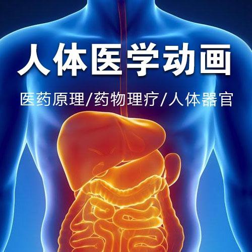 人体医学动画/医药原理动画/生物科技宣传片/药物医疗3d动画