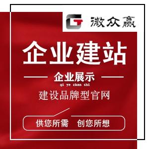 网站建设网站制作企业网站网站定制开发模板建站前端开发网站设