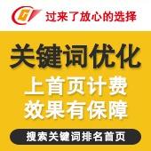 seo网站关键词优化单词优化排名首页快照外链优化