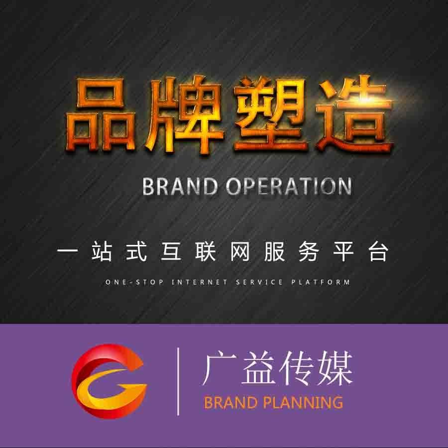 公司品牌策划品牌故事公司简介产品创意文案撰写广告语设计创作