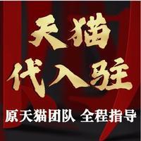 【原天猫团队】天猫入驻方案天猫入驻品牌运营计划天猫入驻PPT