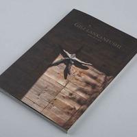 宣传册设计 旅游酒店画册设计