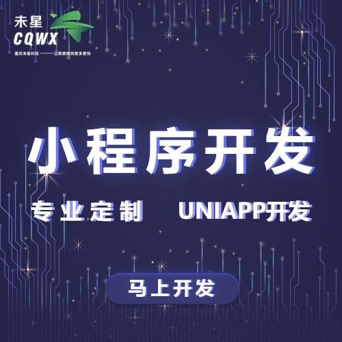 微信小程序开发/抖音小程序开发/直播小程序/uniapp开发