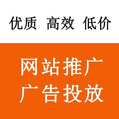 网站推广 广告投放 链接专拍