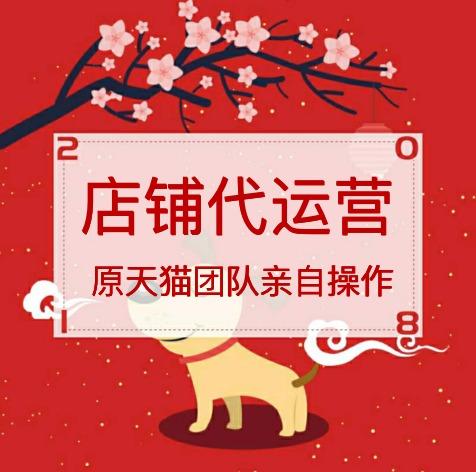 【原天猫团队】淘宝天猫代运营网店代运营店铺代运营京东整店托管
