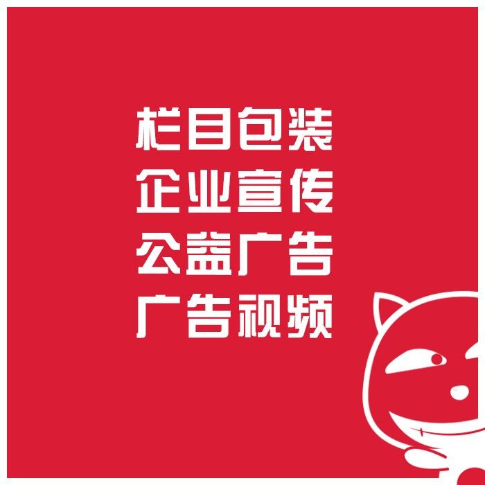 栏目包装 企业宣传  公益广告 广告视频