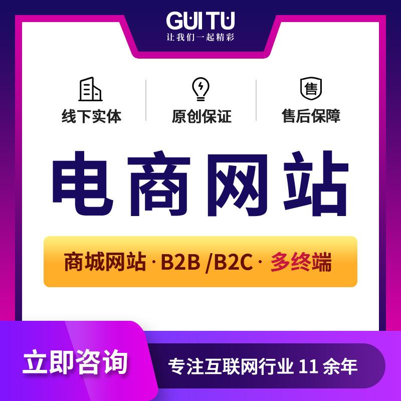 电商网站开发/团购网站/网站定制/网站开发/电商平台/B2C