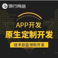 原生APP开发/安卓APP开发/APP定制开发/商城APP