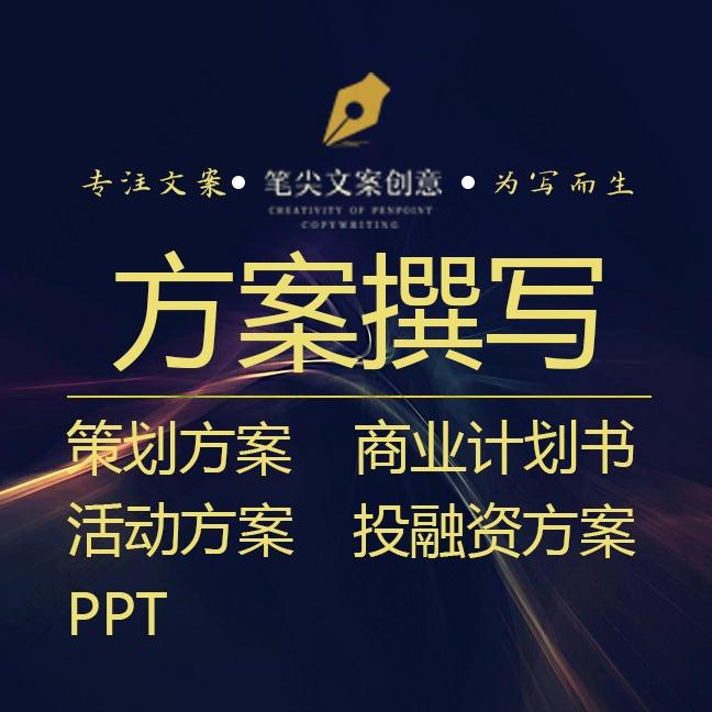 策划方案 写方案 运营方案 活动方案 商业计划书 PPT