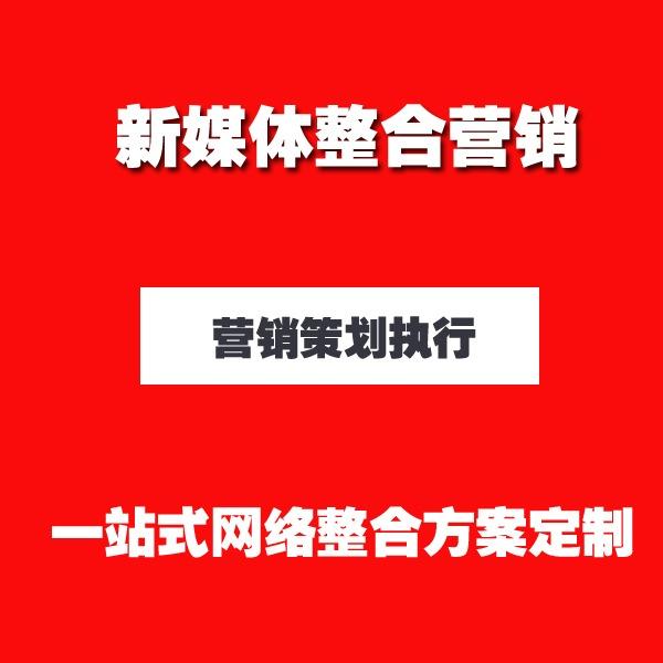 企业线上品牌曝光媒介投放网络 营销 推广 网红营销 媒体宣传方案定制