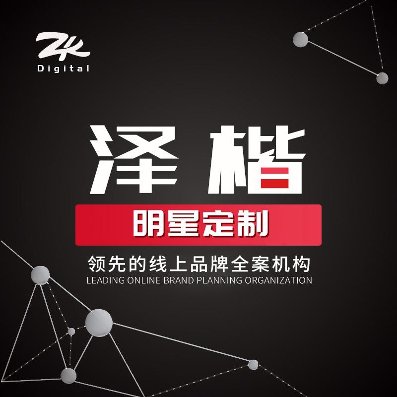 明星定制网红直播整合营销推广创意短视频制作淘宝达人品牌背书