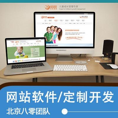 网站建设UI设计大屏网页app软件后台小程序官开发h5前后端