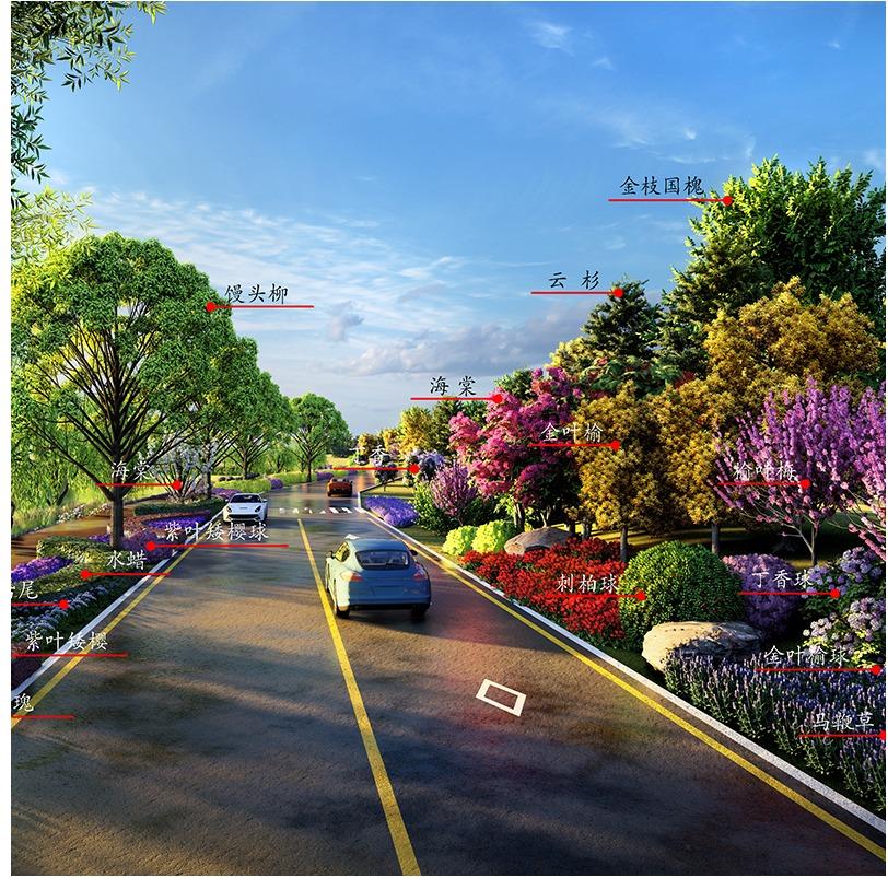 市政道路景观 设计 国道省道乡村道路绿化景观 设计 效果图施工图