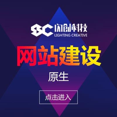 商城网站开发企业网站建设原生定制开发