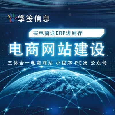 上海掌签信息科技是一家专业做网站建设开发公司