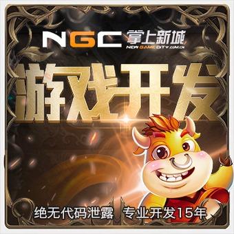 地方特色游戏开发 手机娱乐游戏开发 手机APP游戏开发 游戏