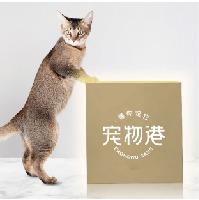 【弓与笔LOGO设计】宠物医疗品牌宠物食品连锁店标志设计