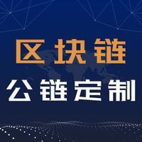 区块链开发 公链主链开发区块链(公链+联盟链+智能合约+Da