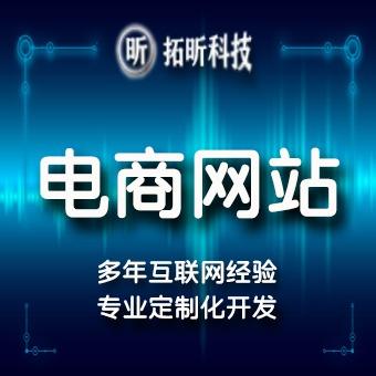 网站建设模板建站电商模板网站手机端PC+手机站Web站开发