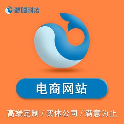 电商网站建设/企业门户官网/响应式网站定制二次开发/模版建站