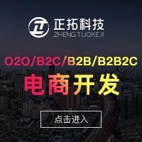 B2B/B2B2C/O2O/B2C/C2C/电商系统定制开发