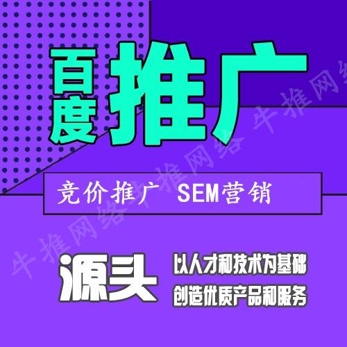 SEO优化网站推广百度推广百度优化排名万词网站建设制作