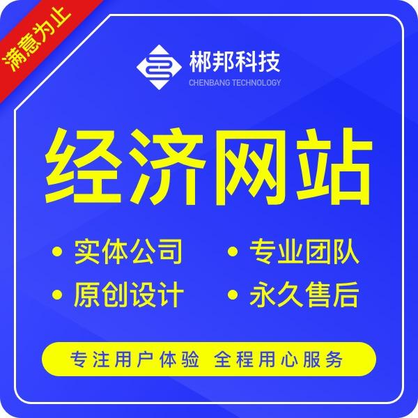 金融网站建设/金融保险行业/经济网站定制开发/官网设计制作