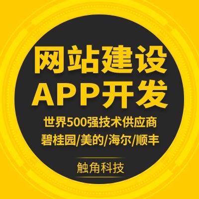 App定制开发php/java/python开发app软件