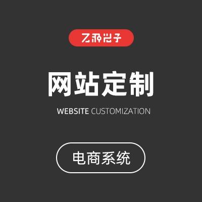 网站定制开发  官网 定制  企业 网站  电商 门口官网 官网设计