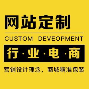 商城开发 O2O网站 电商网站 仿站 网站建设 电商平台建设