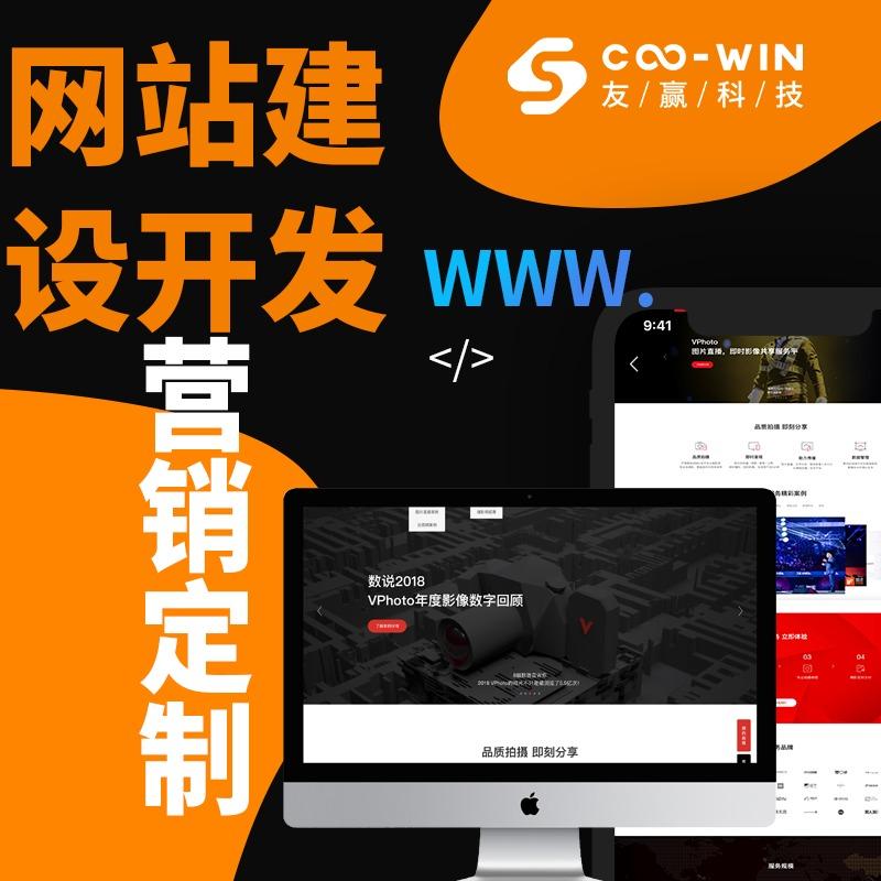 【网站建设开发】营销型网站定制开发/电商/企业/响应式网站