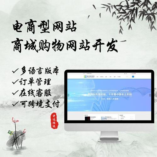 中达鸿运-电商型网站开发/商城网站建设/网站搭建/购物网站
