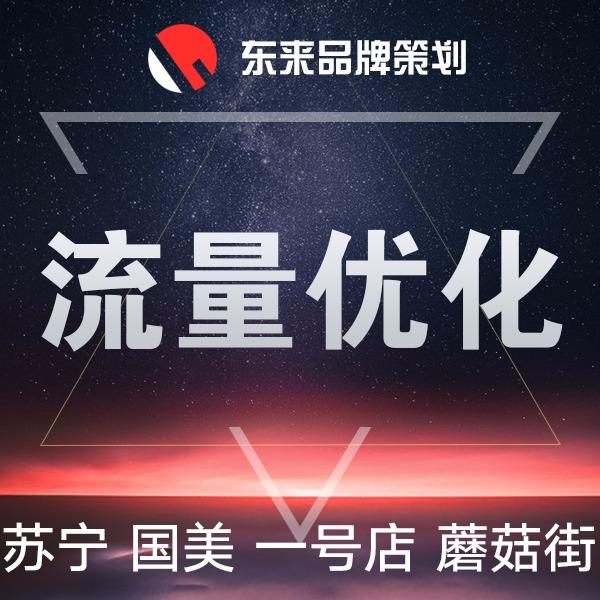 苏宁国美一号店蘑菇街流量店铺运营网店关键词优化搜索排名推广