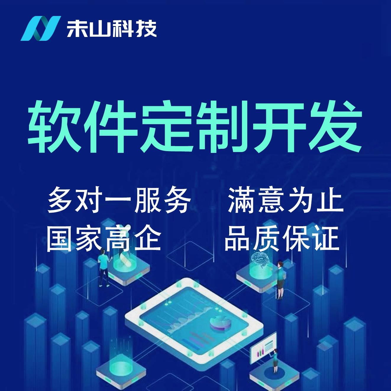 软件定制开发/应用程序/工具软件/数据库/电商软件/商城定制